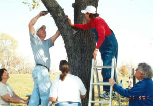 Shawnee County Parks and Rec and TARC Employees, including Virginia Lockhart, wrap trees at TARC's Winter Wonderland in 2001